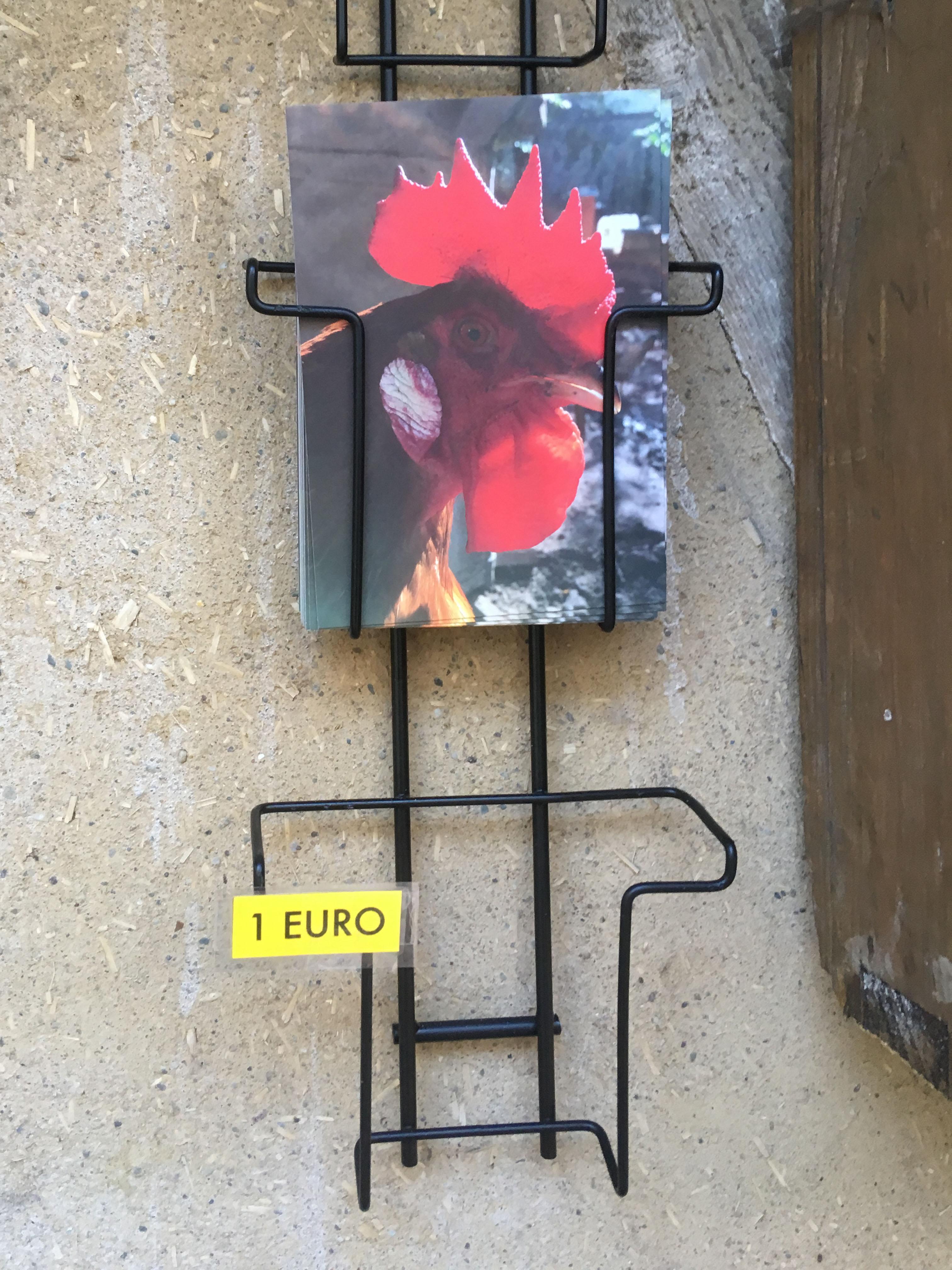 Hühnerhofpostkarte